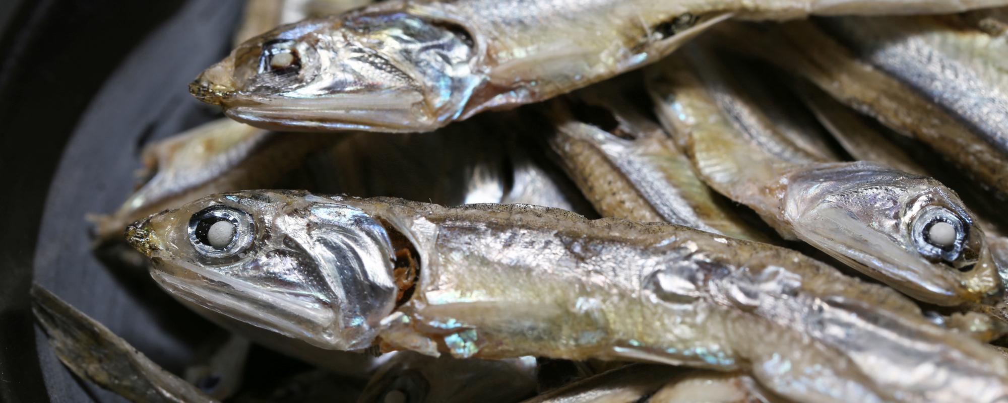 塩無添加食べる小魚